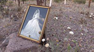 Love In A Dying World - Samantha Stella B